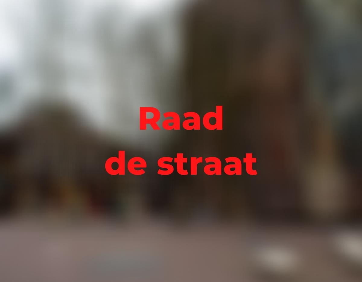 Raad de Straat domplein