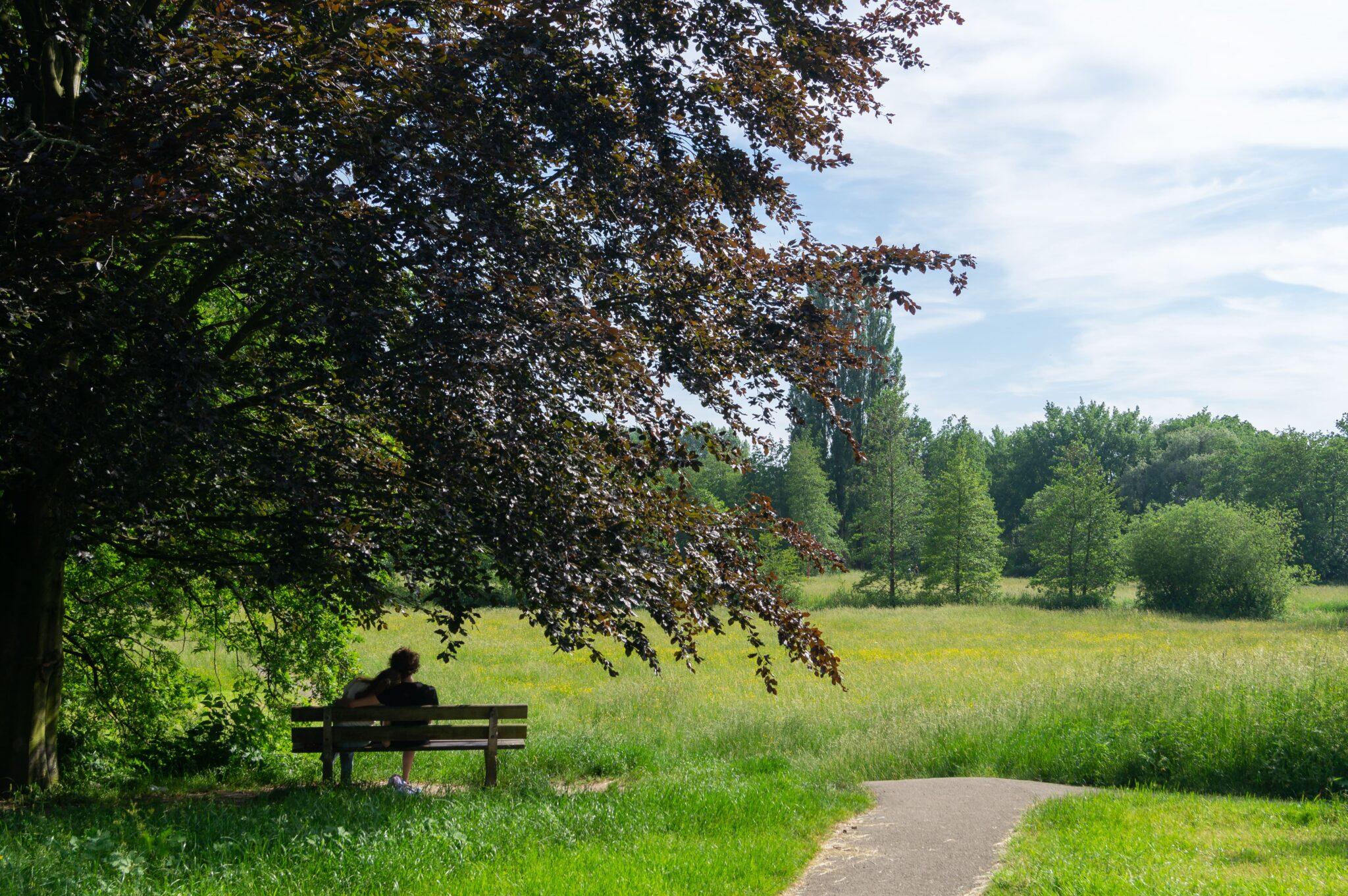 Beatrixpark utrecht