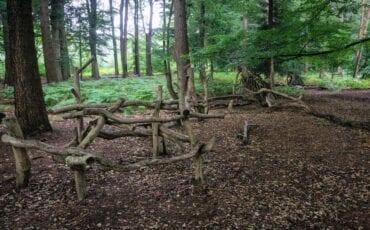 Beleefpad in het Prattenburgse Bos