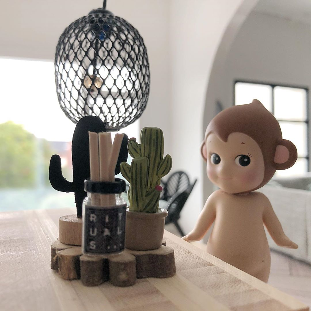 Little Monkey House