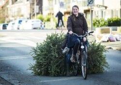 kerstboom inleveren vlaardingen