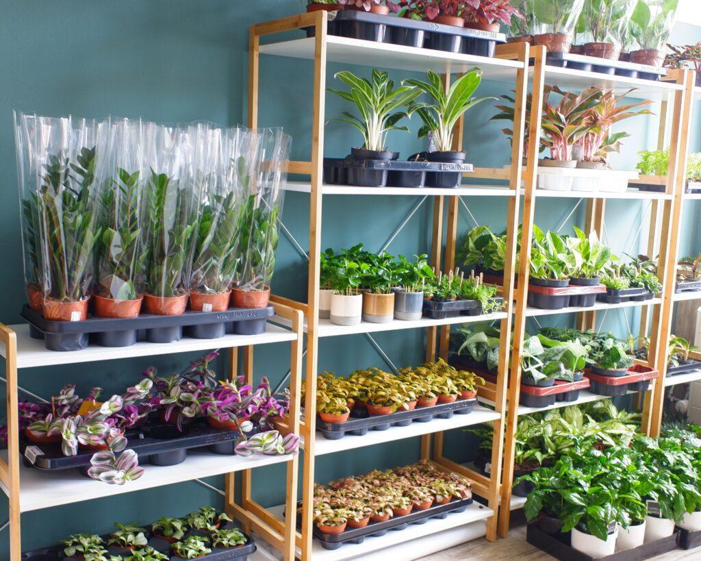 De Plantenpotten 09 voorraadkast
