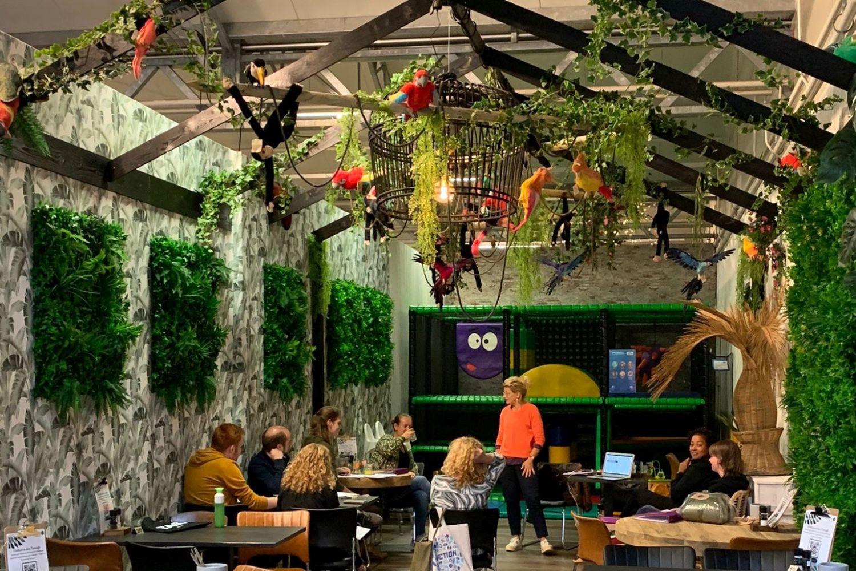 Groenrijk ' Haantje - Kinderspeelplek 2