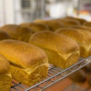 Brood bakkerij