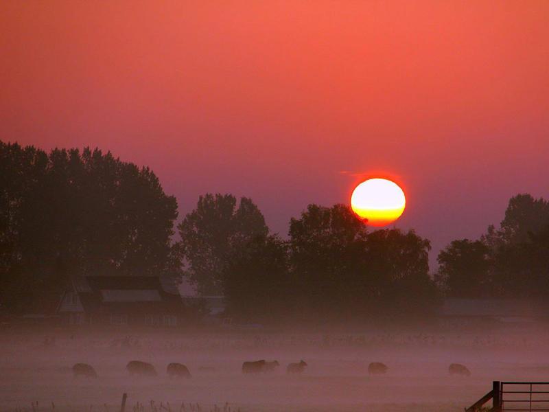 Mees Weststrate mist weer