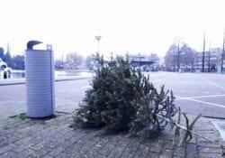 Kerstboom inleveren