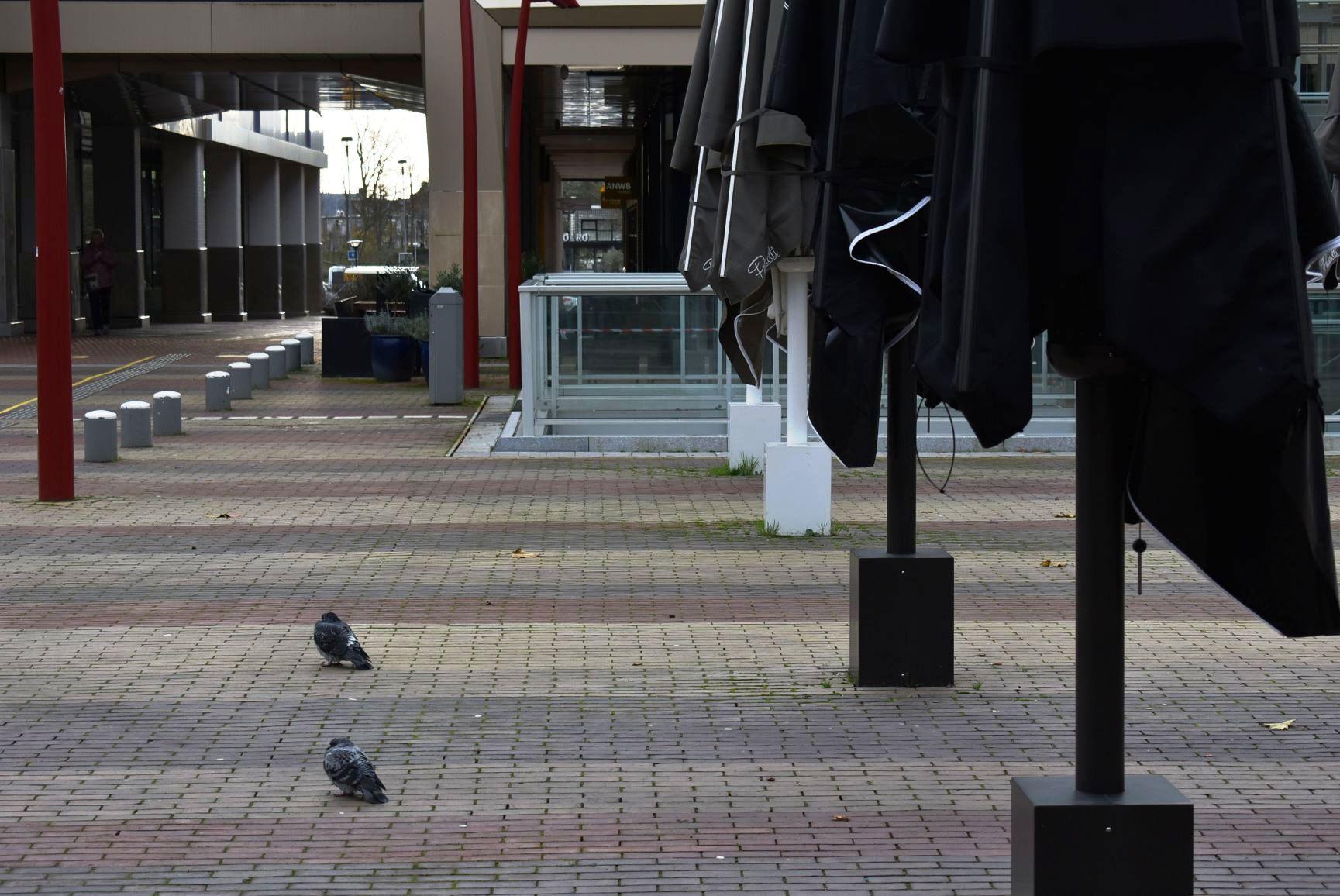 Stadhuisplein Zoetermeer