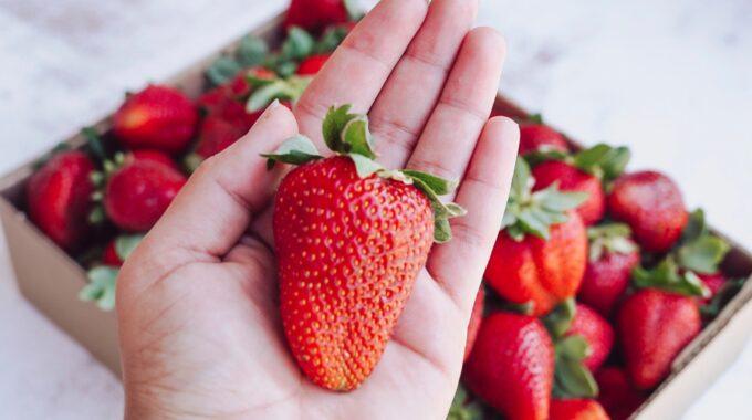Aardbeien Zoetermeer