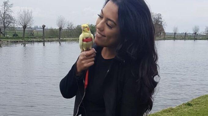 Angelique en valkparkiet Pikachu