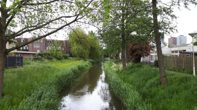 Buytenwegh Zoetermeer