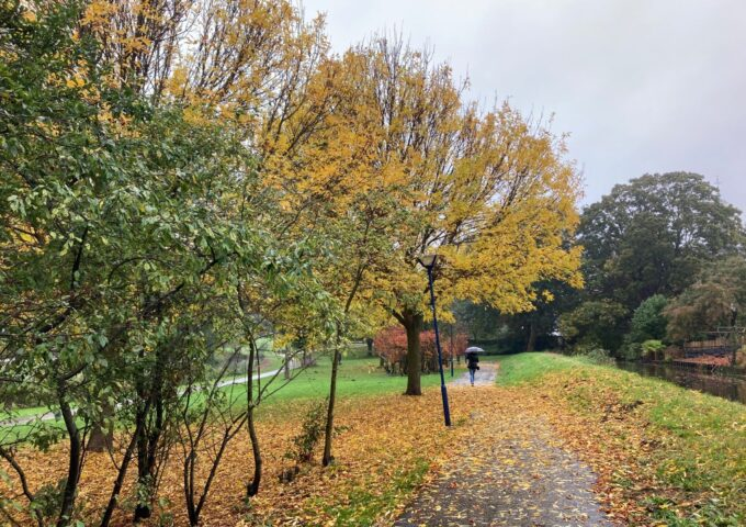 Herfst Zoetermeer