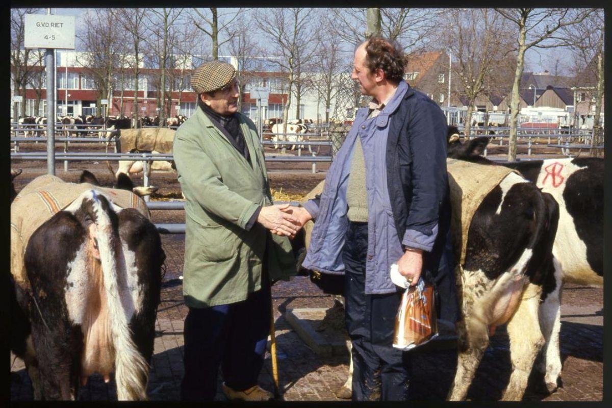 handjeklap-zwolse-veemarkt