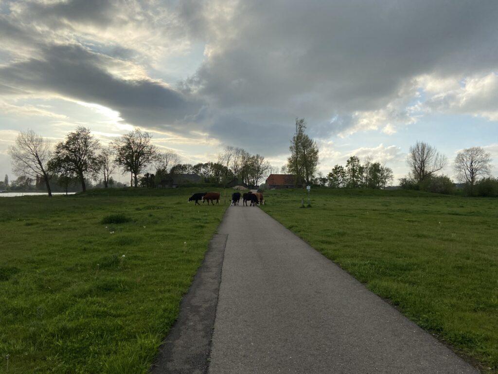 Jan Voerman struinpad
