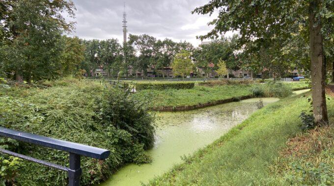 eendenkroos Park Eekhout Zwolle